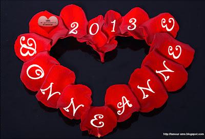 bonne année 2013 pépites de fleur