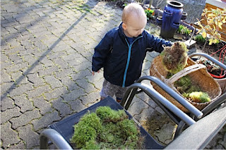 Christkind beim Nestbau