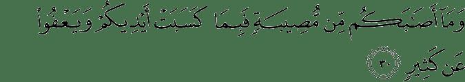 Surat Asy-Syura ayat 30