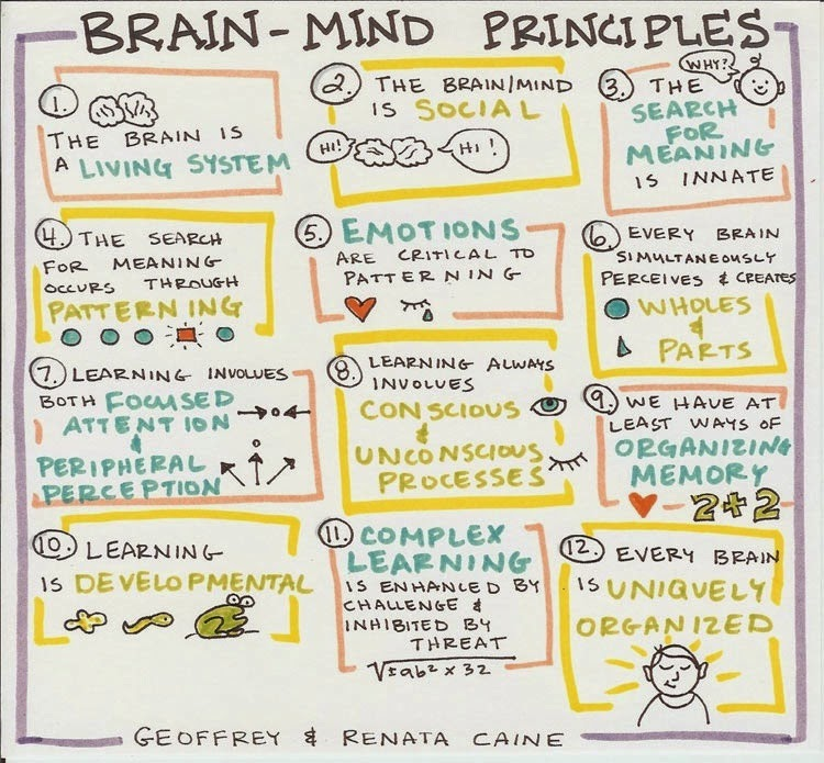 brain based learning Explore joyce hooper's board brain based learning activities on pinterest   see more ideas about school, teaching ideas and bloom's taxonomy.