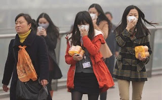Kesehatan, Detoks Asap, Polusi