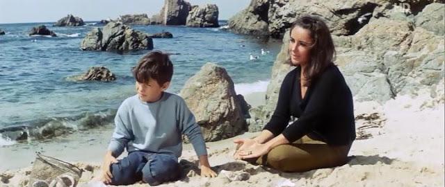 Castillos en la arena | 1965 | The Sandpiper