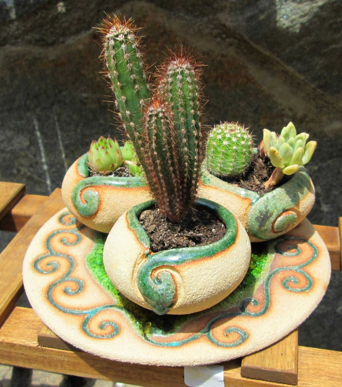 macetas para cactus, macetas para crasas, macetas para suculentas, decoracion jardin, decoración rustica, macetas para el jardin,