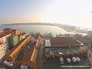 MERCATO ITTICO: IL 2014 SI CHIUDE BENE