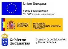 Este centro imparte asignaturas cofinanciadas por el  Fondo Social Europeo