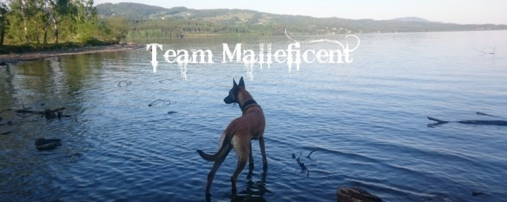Team Malleficent