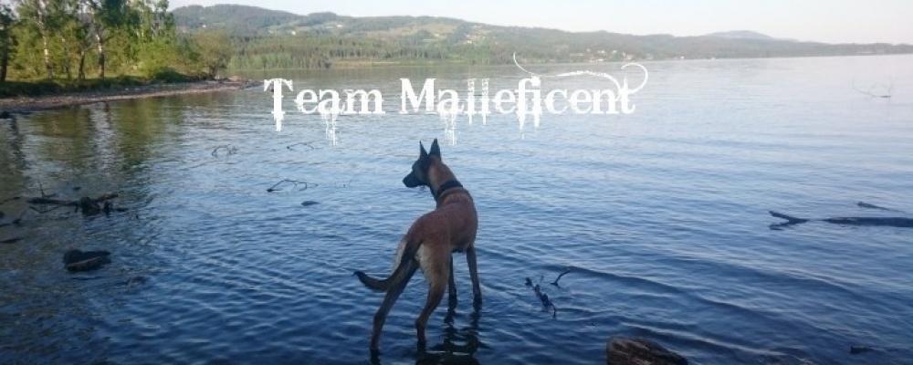Team Malleficent