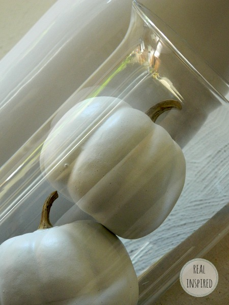White Fall Pumpkins