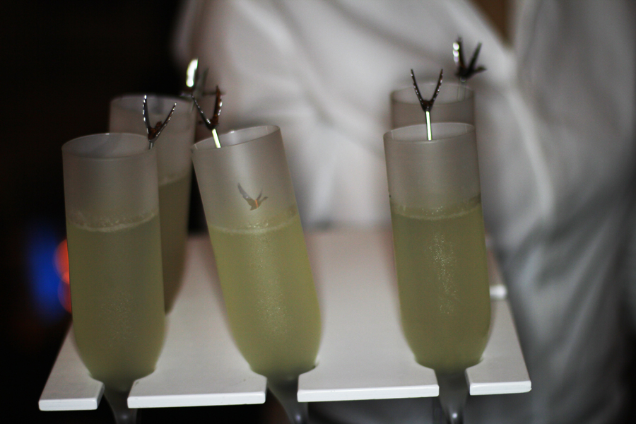 grey goose drink cocktail