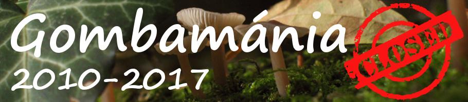 Gombamánia