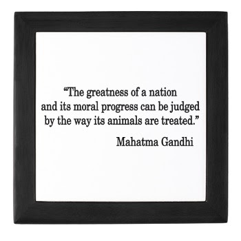 Collection of Best Mahatma Gandhi Quotes