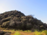 View northwest toward Mt. Bell, Griffith Park