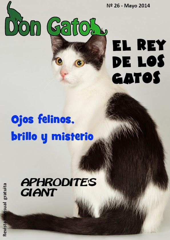 Portada revista Don Gato