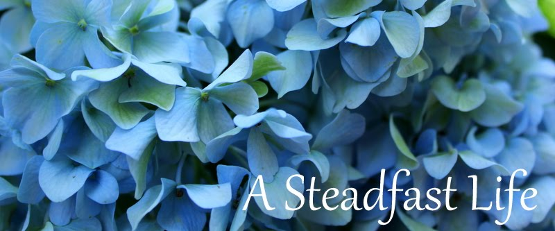 A Steadfast Life
