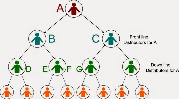 mô hình nhị phân