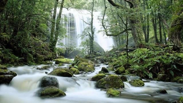 Tasmania - Una superba cascata