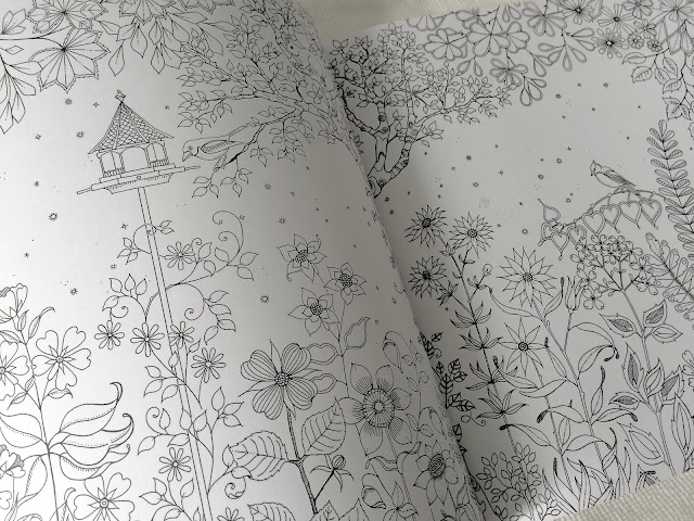 Secret Garden Adult Coloring Book by Johanna Basford (Korean Version)