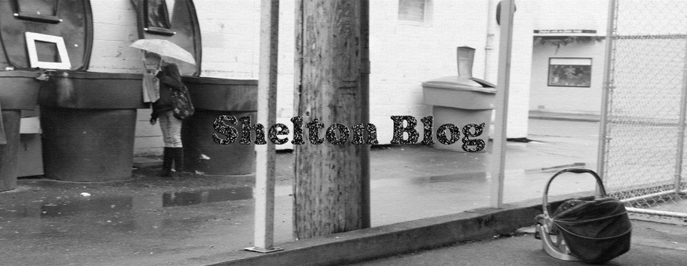 Shelton Blog