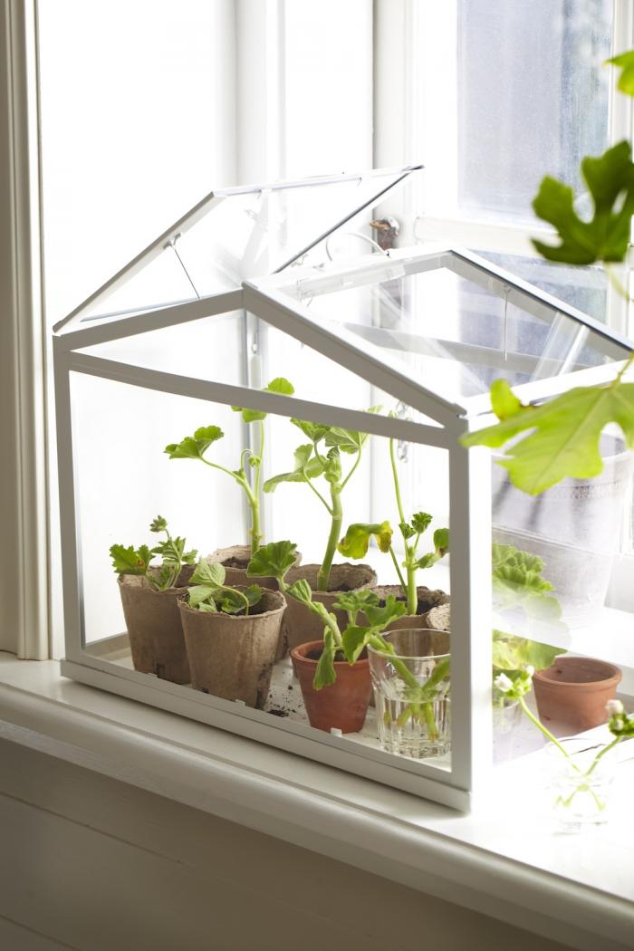 decorology how to live greener in the city or suburbs diy gold mini greenhouse from ikea run to radiance