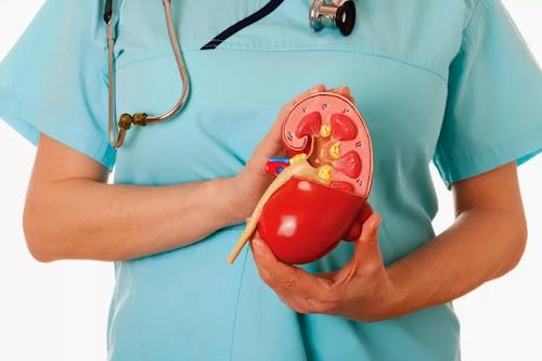 Tips Diet Untuk Penderita Gagal Ginjal