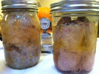 Canning Chicken with and without bones