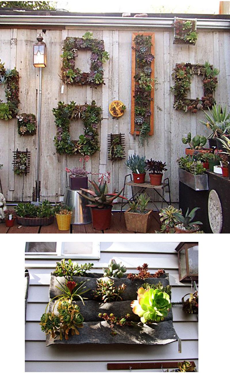 banco de jardim frases:ideal é podermos misturar canteiros com plantas que nãoprecisem de