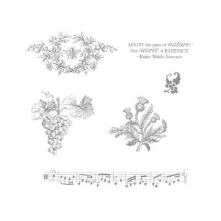 Image of Stampin'UP! stamp set: Nature's Pace