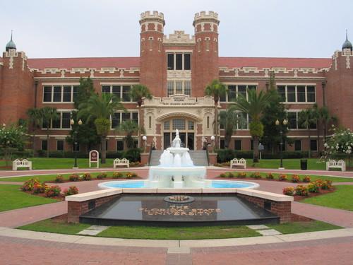 university of florida freshman application essay