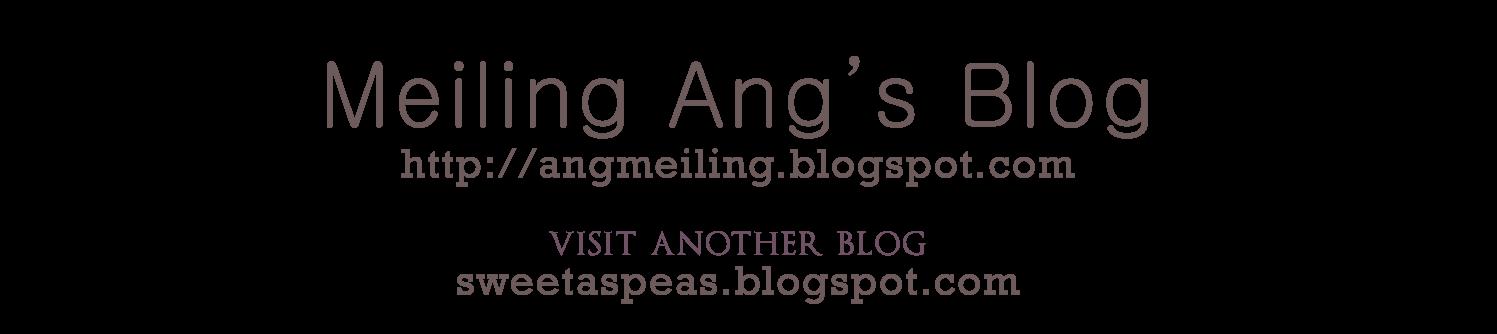 MEILING ANG's BLOG
