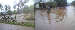 Kawasan Pertanian di Desa Ngali Dihantam Banjir