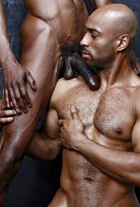 Brothahood Of Black Frot