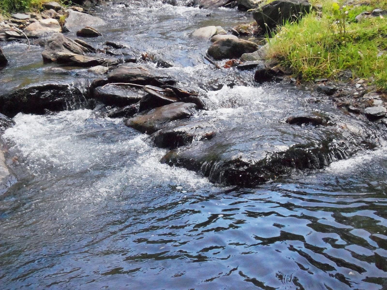 paisaje-rio