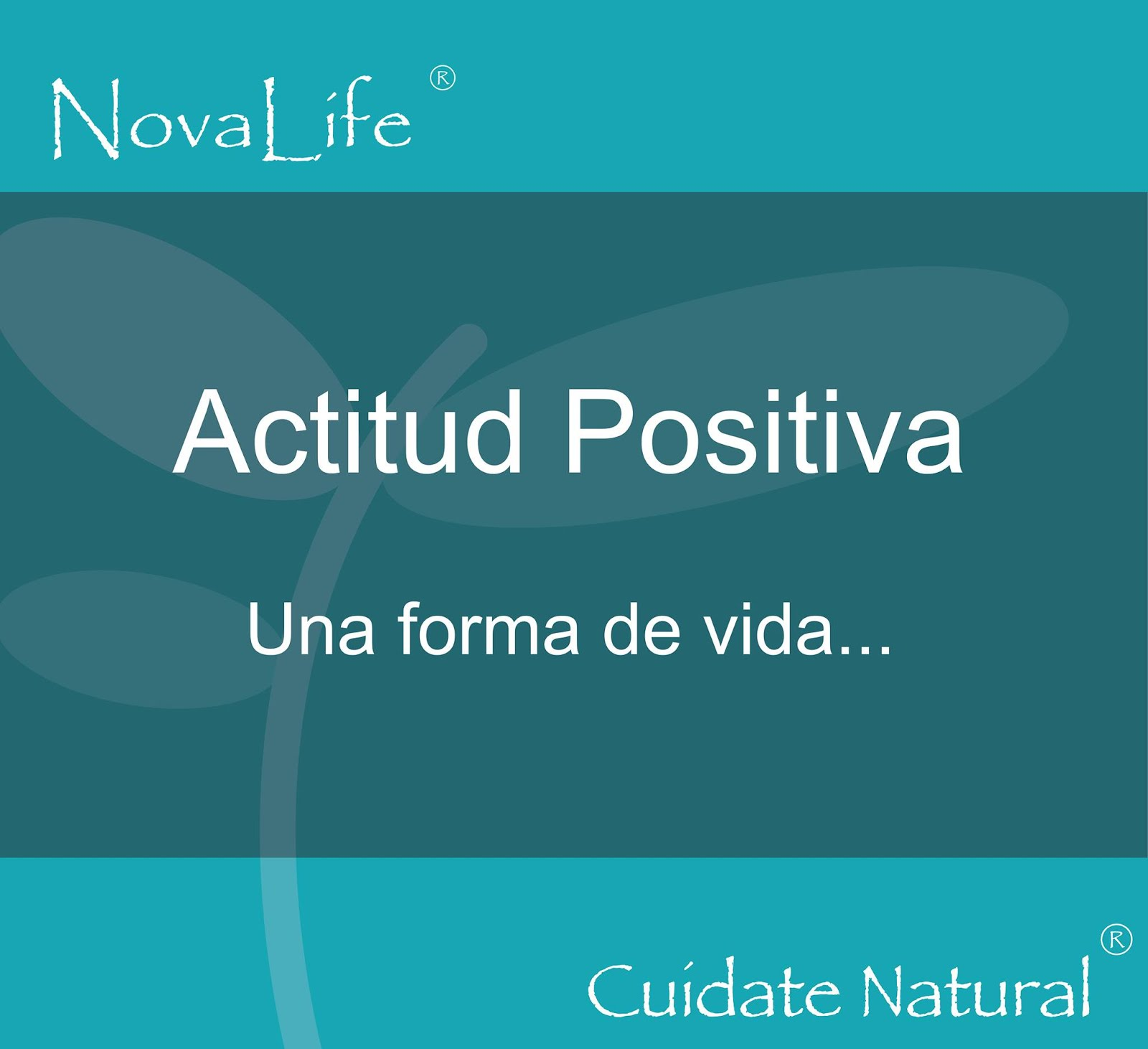 Nova Life Sport