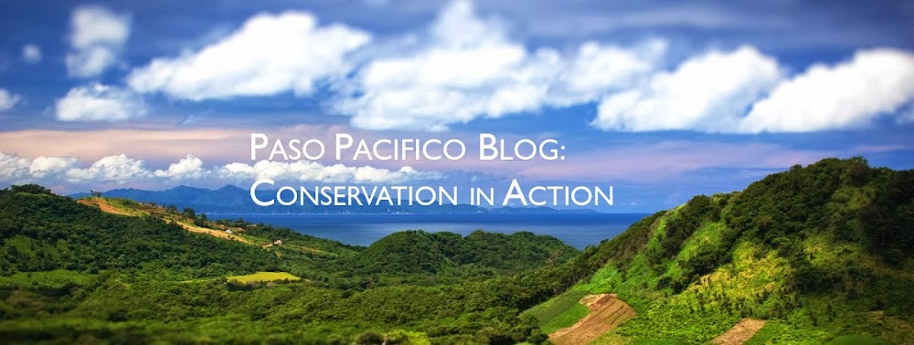 Paso Pacifico Blog: Conservation in Action