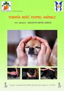 Vrei sa ajuti animalele? Inscrie-te la Curs Reiki pentru animale