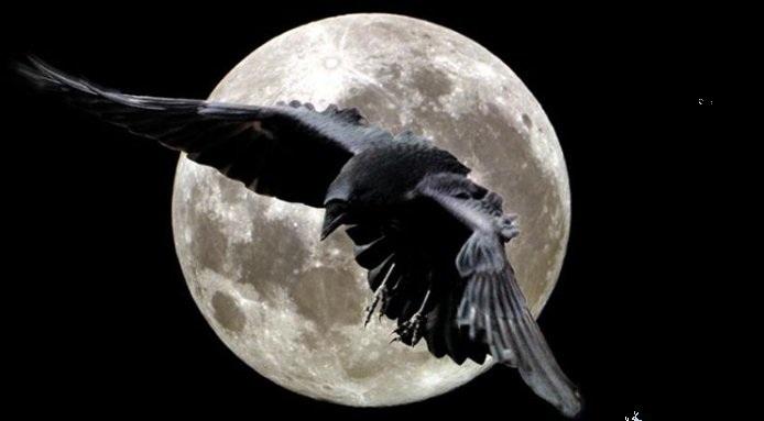 Φτερωτοί αγγελιοφόροι του θανάτου! τα πουλιά θεωρούνται ως φορείς ή σύμβολα της ανθρώπινης ψυχής