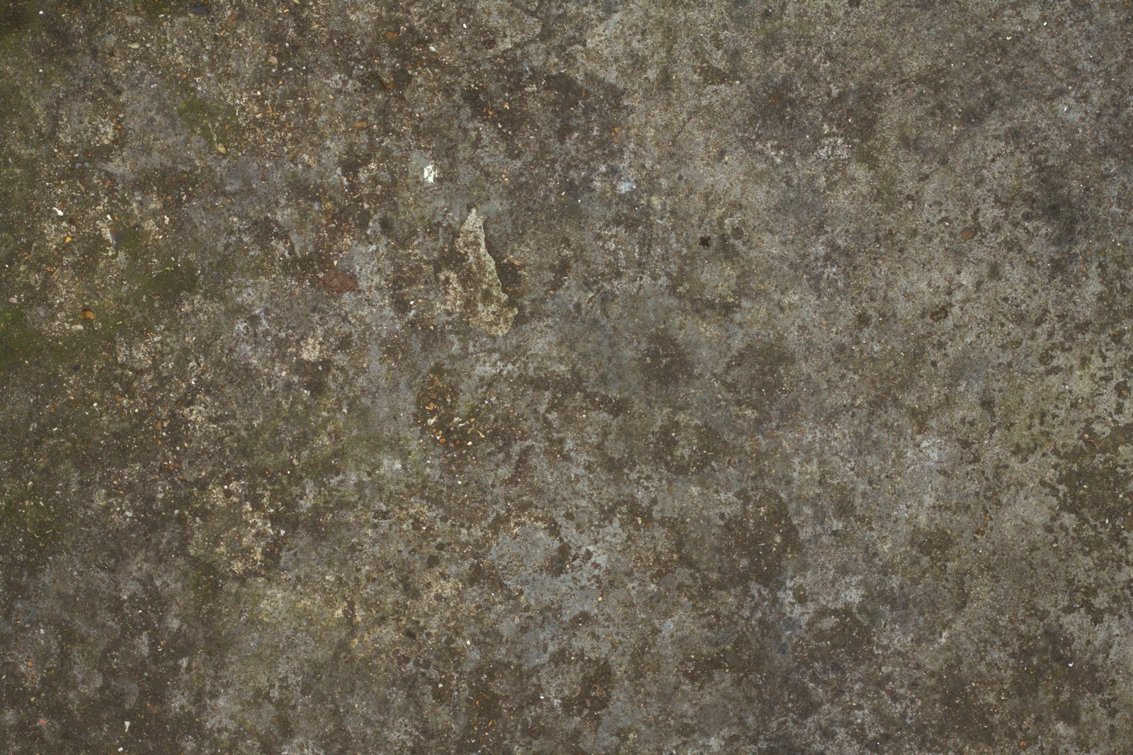 Concrete floor dirty moss texture 4770x3178