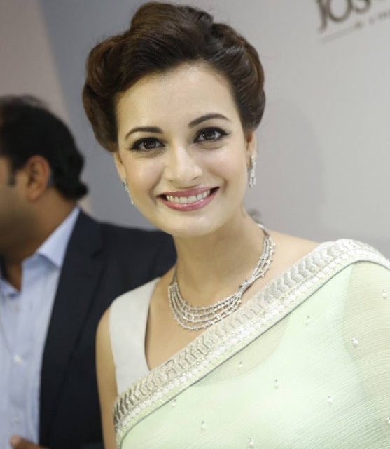 Dia Mirza Latest Photos At Platinum Evara Launch