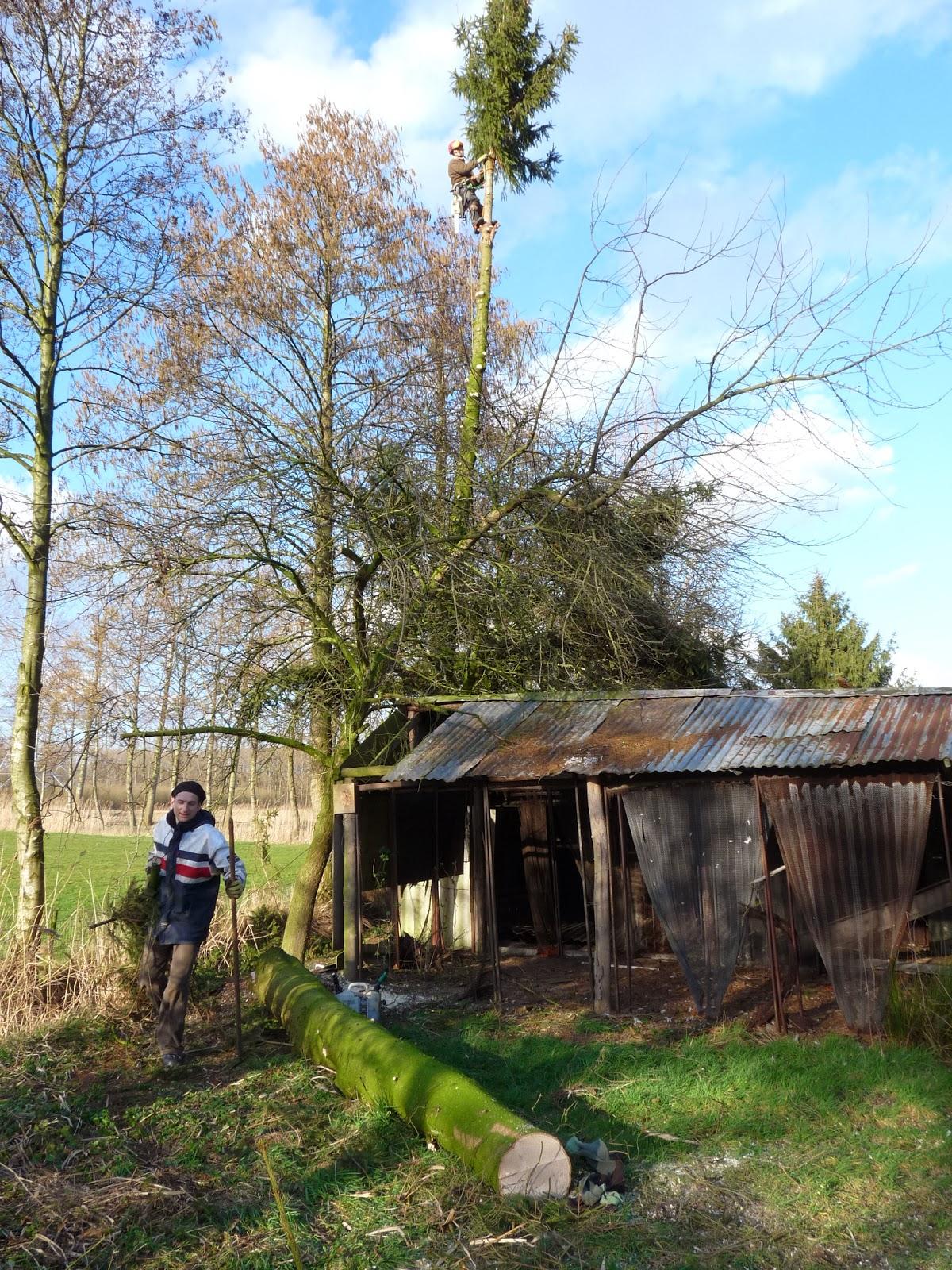#2075AB22397016 Ons Nieuwe ECO Huis!: Asbest Inspectie En Bomen Verwijderen Van de bovenste plank Asbest In Huis 803 beeld 12001600803 Inspiratie