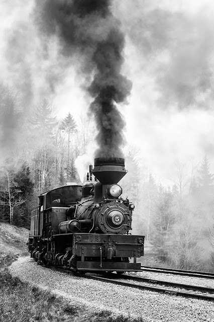 Shay #5 Steam Engine