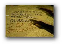 Cristofobia, Cristianofobia, Argentina, Encontro Nacional de Mulheres, Encuentro Nacional Mujeres, Catedral, Católicos, Abortistas, Bariloche