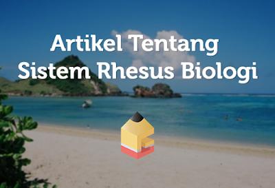 Artikel Tentang Sistem Rhesus Biologi1