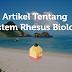 Artikel Tentang Sistem Rhesus Biologi