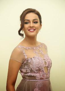Actress Seerat Kapoor Pictures in Long Dress at Tiger Audio Launch  43.JPG