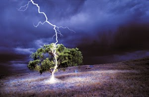 LightningStrikesTree