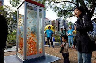 aquarium bekas telephone umum