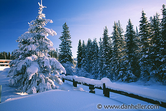 Beautiful snowfall real snowfall hd desktop wallpapers Beautiful snowfall pictures