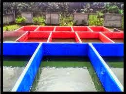 Contoh kolam terpal siap pakai