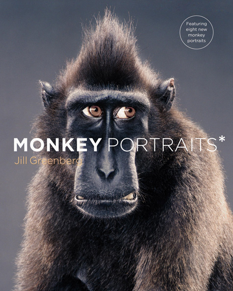 Monkey Portraits Monkey Cover