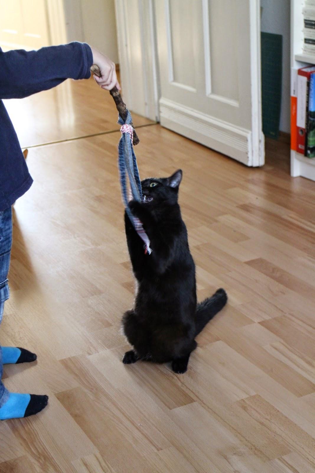 Katzenspielzeug aus Jeanssäumen